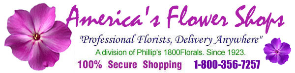 Send flowers today with Americas Flower Shops. Same-day and next-day florist delivery throughout the USA and Canada.